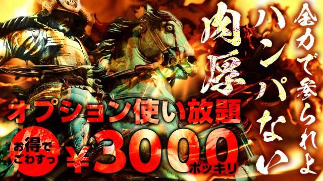 フルオプバナー3000円